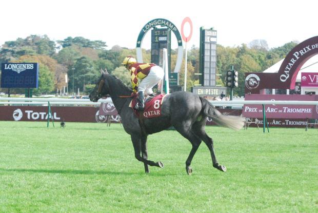 Corrida de cavalo Longchamps - foto por Cristiano Cittadino Oliveira