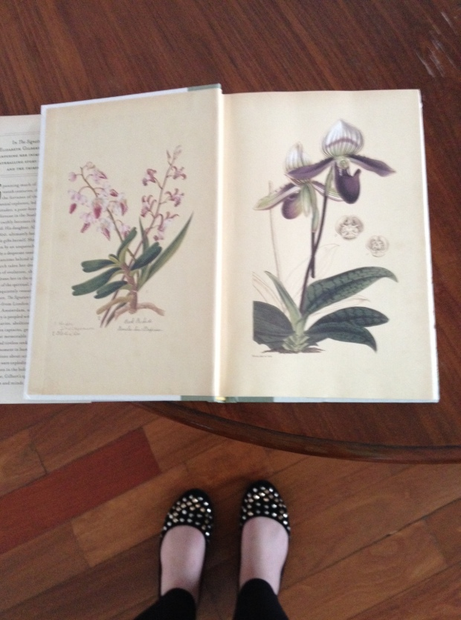 Foto e pés por Júlia A. O.